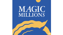Magic Millions | Brisbane Racing Club