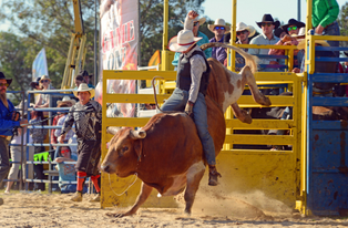 rodeo-general-admission-thumbnail