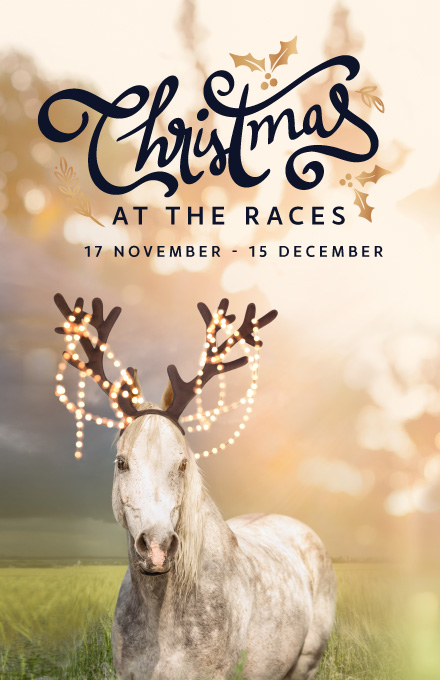 Homepage Widget Christmas at the Races