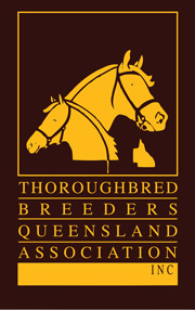 Thoroughbred Breeders Queensland Association Logo