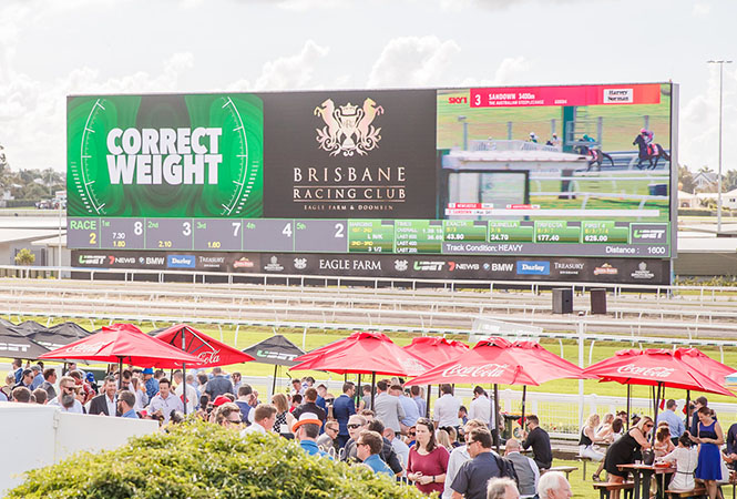 Watch the races on the biggest screen in the Southern Hemisphere